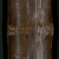 C.III.10_0001_Spine.jpg